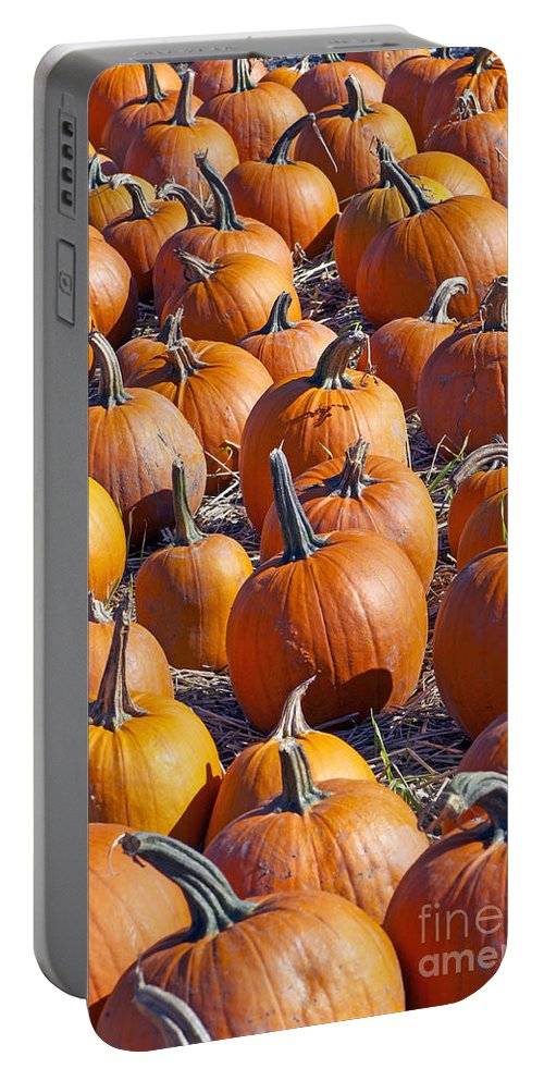 Pumpkin Portable Battery Charger featuring the photograph Pumpkin Harvest by Sharon Talson