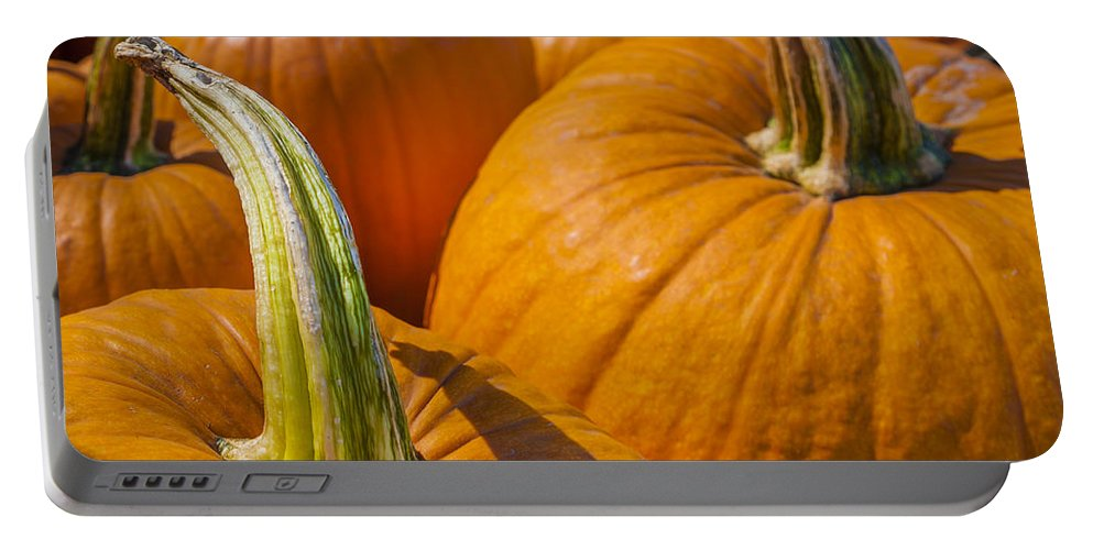 Pumpkin Portable Battery Charger featuring the photograph Pumpkin Patch by Scott Campbell