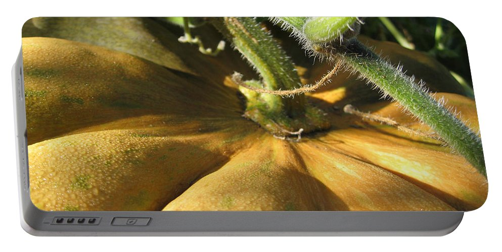 Close Up Portable Battery Charger featuring the photograph Pumpkin Ripe by Noa Mohlabane
