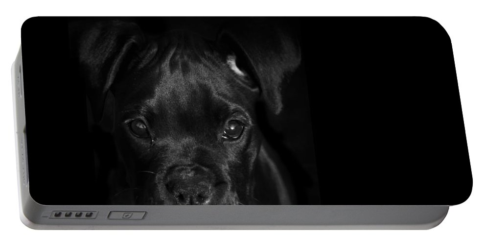 Puppy Portable Battery Charger featuring the photograph Puppy Eyes by Stephanie McDowell