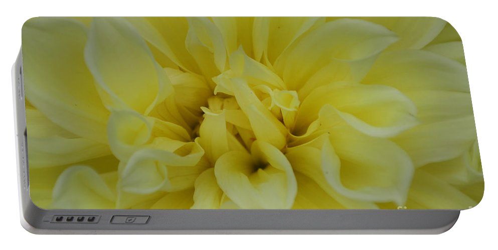 Flower Portable Battery Charger featuring the photograph Pure And Simple by Susan Herber