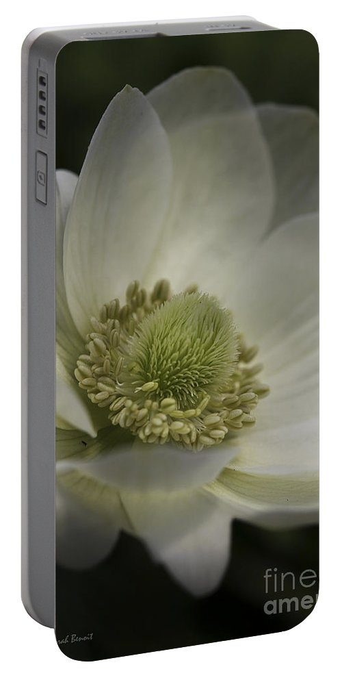 Flower Portable Battery Charger featuring the photograph Pureness In White by Deborah Benoit