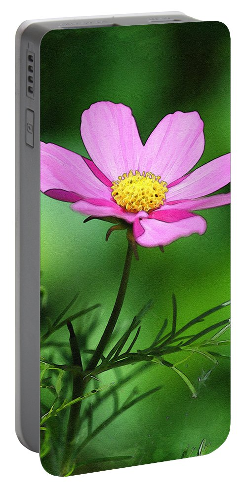 Purple Portable Battery Charger featuring the photograph Purple Flower by Pati Photography