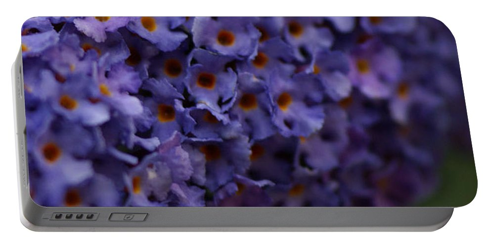 Purple Portable Battery Charger featuring the photograph Purple Flowers 2 by Carol Lynch