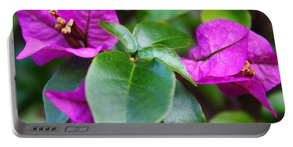 Purple Flowers Portable Battery Charger featuring the photograph Purple Flowers by Catie Canetti