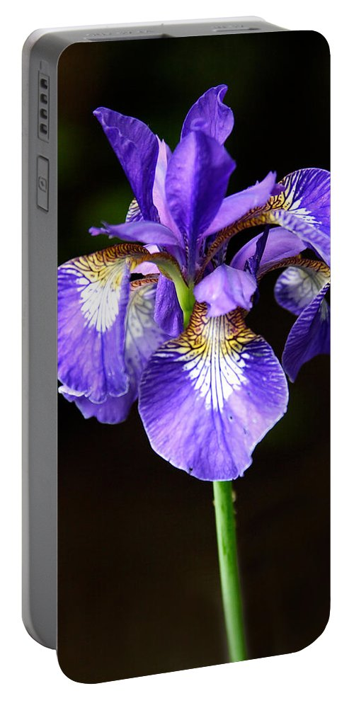 3scape Portable Battery Charger featuring the photograph Purple Iris by Adam Romanowicz