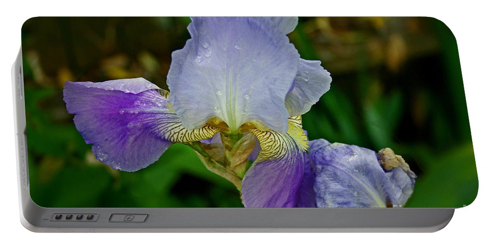 Iris Portable Battery Charger featuring the photograph Purple Iris by Bob Hislop