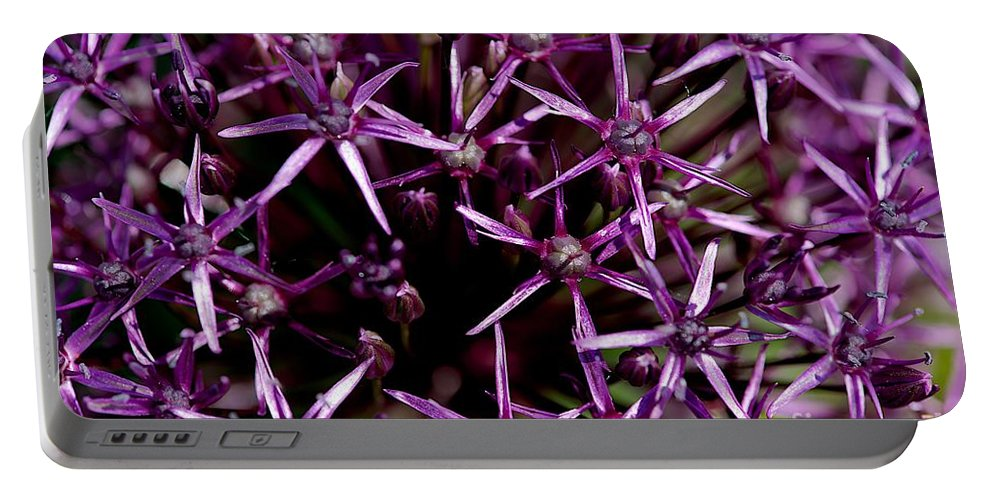 Flower Portable Battery Charger featuring the photograph Purple by Joseph Yarbrough