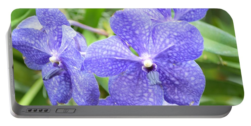 Purple Orchis Portable Battery Charger featuring the photograph Purple Mokara Orchid by Sonali Gangane