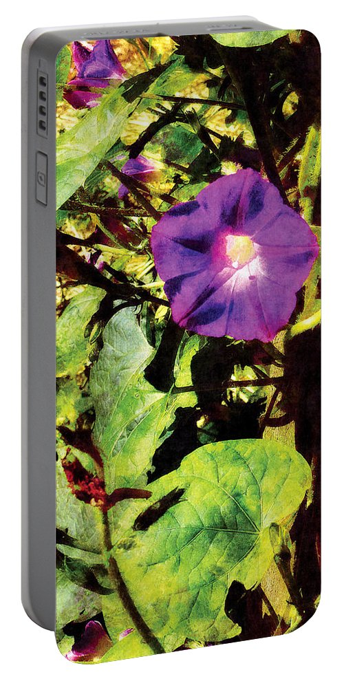 Morning Glory Portable Battery Charger featuring the photograph Purple Morning Glory by Susan Savad
