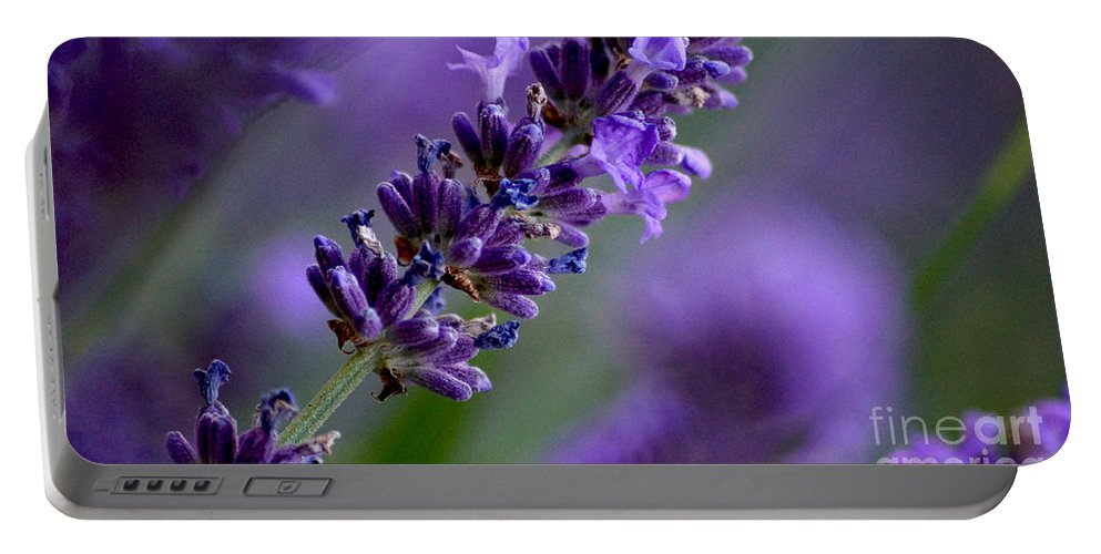 Blumen Portable Battery Charger featuring the photograph Purple Nature - Lavender Lavandula by Eva-Maria Di Bella
