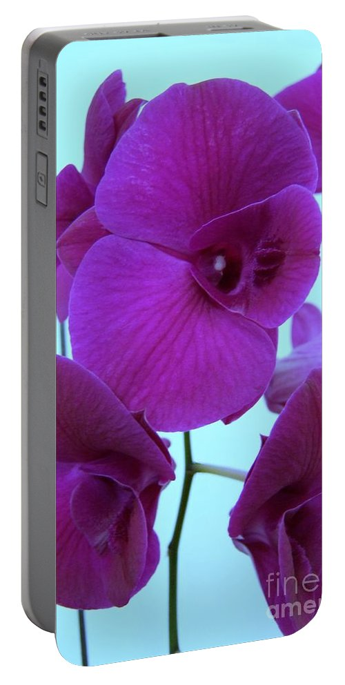 Orchid Portable Battery Charger featuring the photograph Purple Orchids 3 by Mary Deal