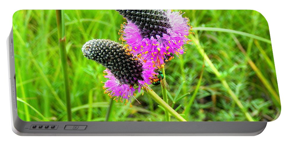 Flower Portable Battery Charger featuring the photograph Purple Pair by Mark Hudon