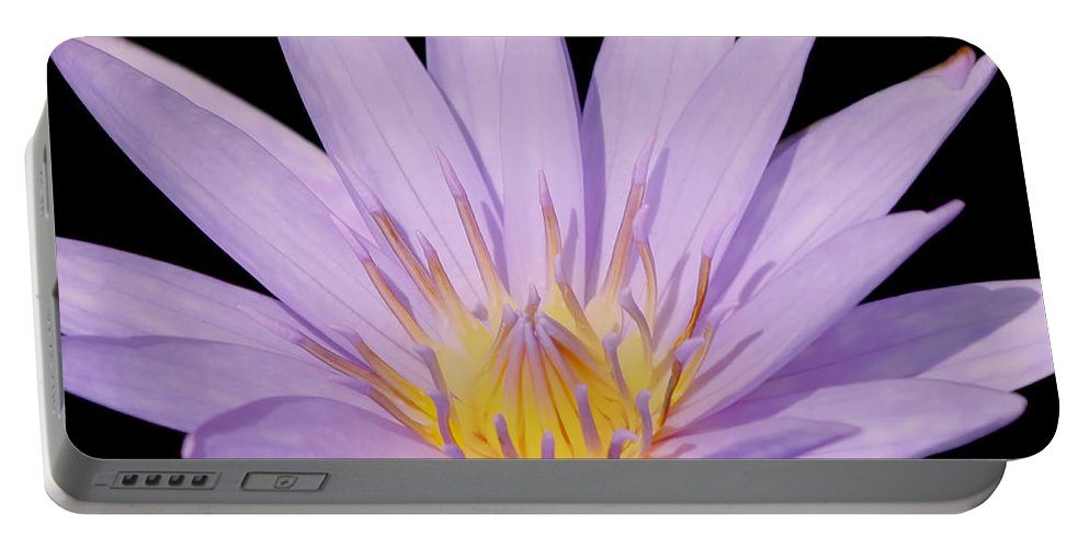 Purple Portable Battery Charger featuring the photograph Purple Water Lily by Kim Hojnacki