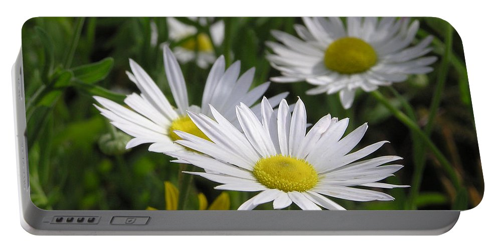 Flower Portable Battery Charger featuring the photograph Pushing Up Daisies by Shannon Story