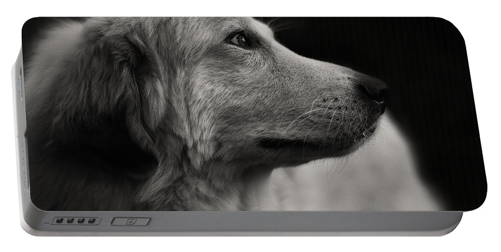 Adorable Portable Battery Charger featuring the photograph Pyrenean by TouTouke A Y