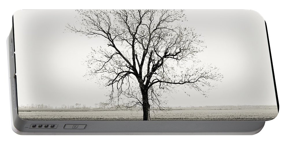 Tree Portable Battery Charger featuring the photograph Quiet Desperation by Scott Pellegrin