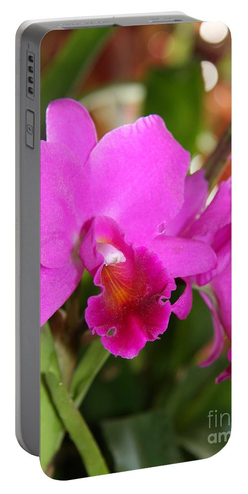Orchid Portable Battery Charger featuring the photograph Radiant Pink by Christiane Schulze Art And Photography