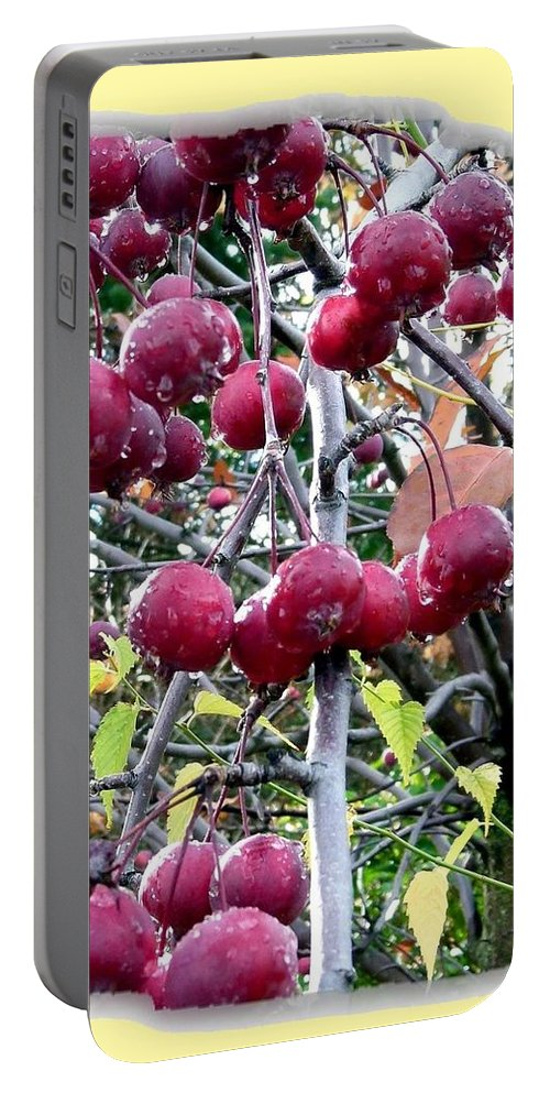 Rain On The Crab Apples Portable Battery Charger featuring the photograph Rain On The Crab Apples by Will Borden