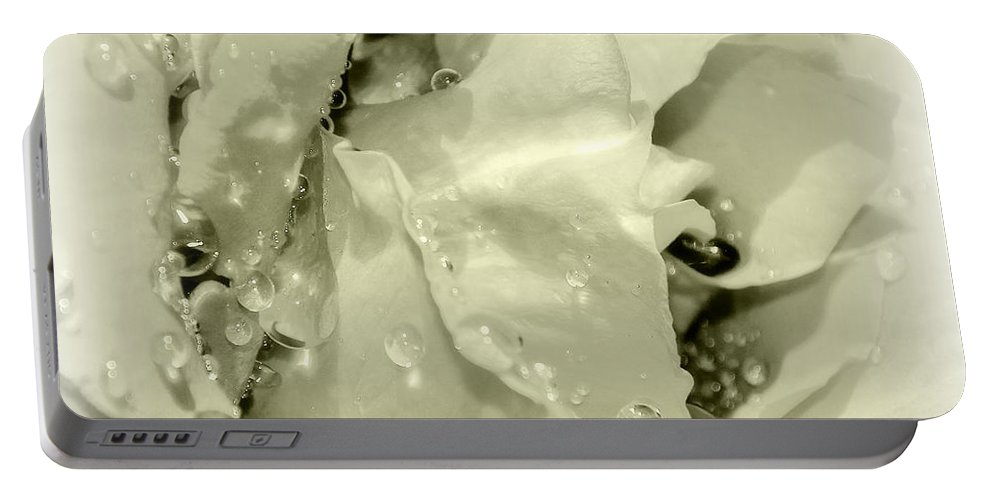 Rain Portable Battery Charger featuring the photograph Raindrops On White Rose by Katie Wing Vigil