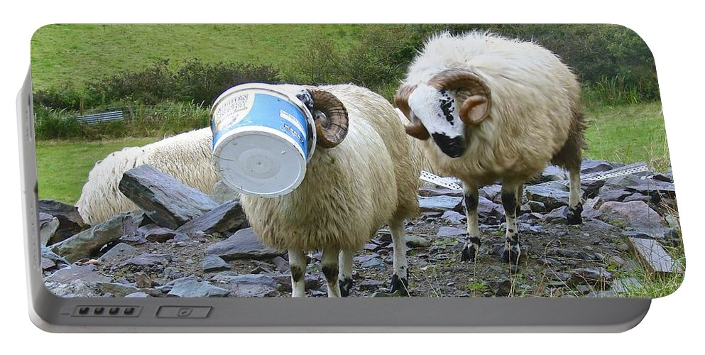 Sheep Portable Battery Charger featuring the photograph Ram Tough by Charlie and Norma Brock