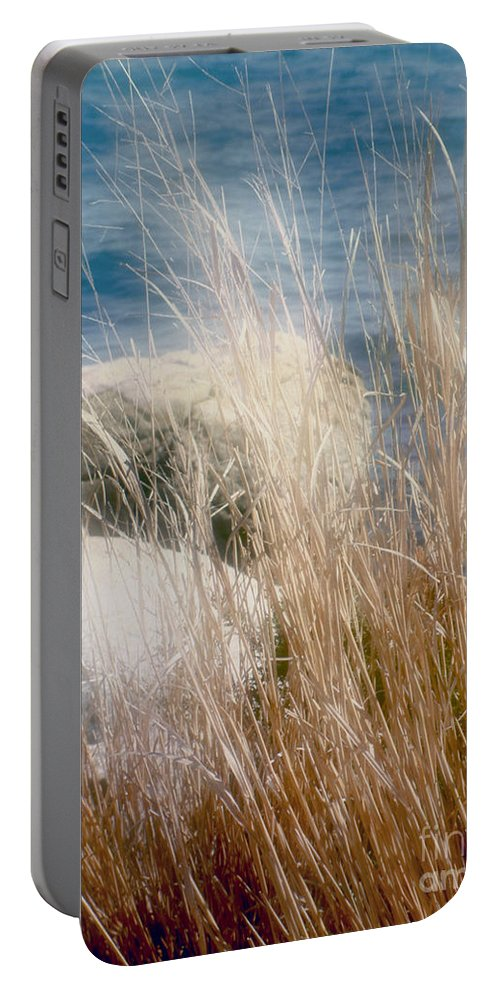 Reeds Portable Battery Charger featuring the photograph Rapunzel Reeds by RC DeWinter
