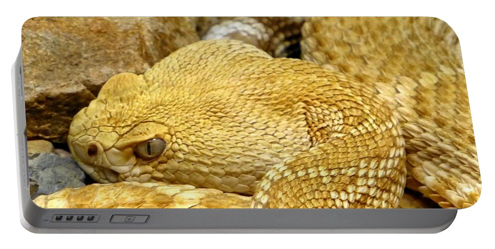 Coiled Portable Battery Charger featuring the photograph Rattler's Repose by Ron D Johnson