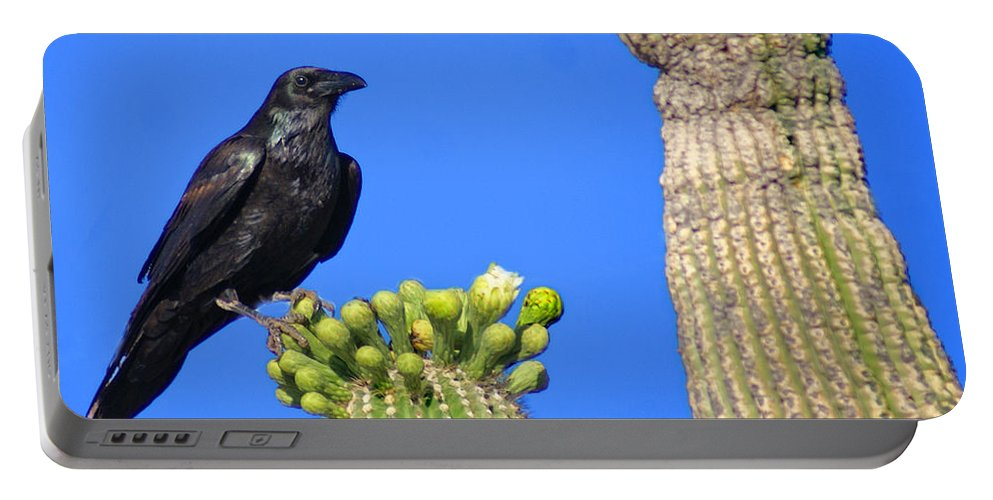 Birds Portable Battery Charger featuring the photograph Raven by Heather Coen