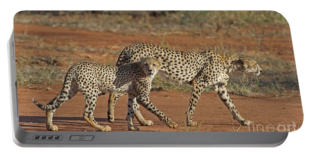 Festblues Portable Battery Charger featuring the photograph Raw Power... by Nina Stavlund