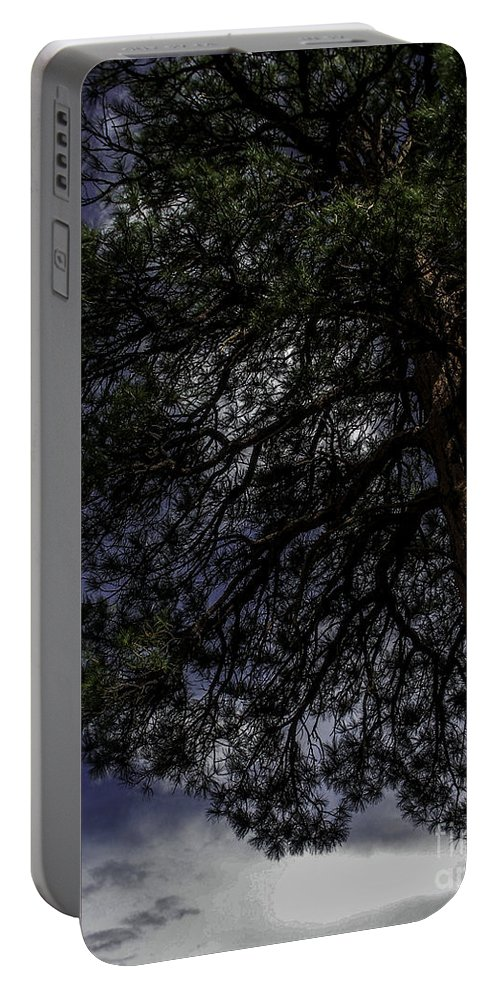 Lovejoy Portable Battery Charger featuring the photograph Reach The Sky by Lovejoy Creations