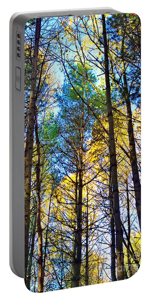 Sky Portable Battery Charger featuring the photograph Reaching For The Sky by Gary Richards
