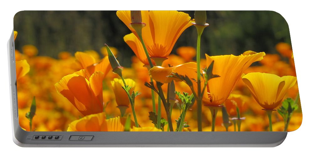 Poppies Portable Battery Charger featuring the photograph Reaching For The Sky by Sheryl Young