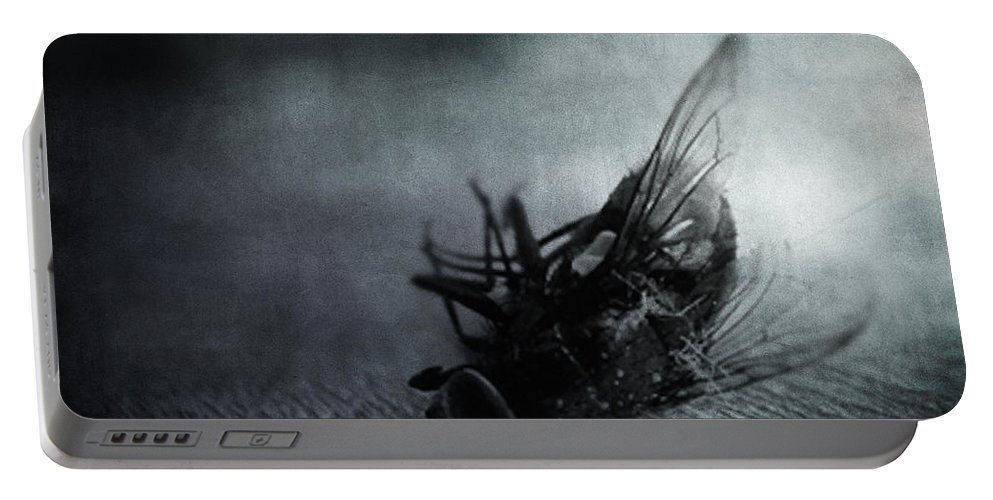 Fly Portable Battery Charger featuring the photograph Rebirth by Zapista OU