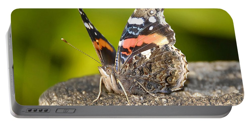 Red Admiral Butterfly Portable Battery Charger featuring the photograph Red Admiral Butterfly by David Lee Thompson