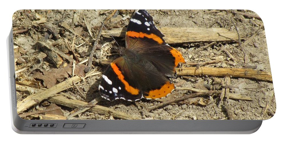Butteriflies Portable Battery Charger featuring the photograph Red Admiral by Eric Noa