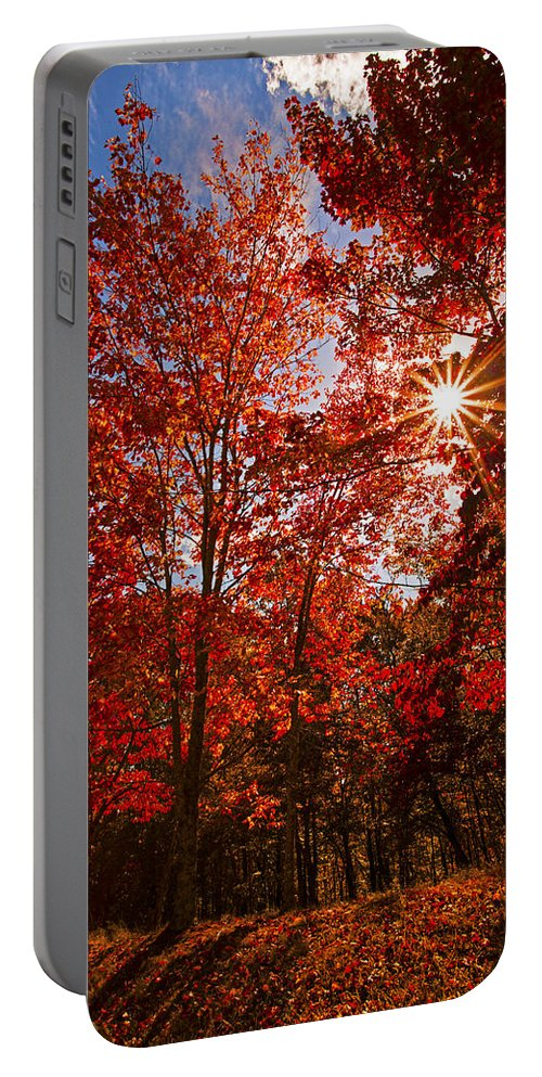Red Autumn Leaves Portable Battery Charger featuring the photograph Red Autumn Leaves by Jerry Cowart