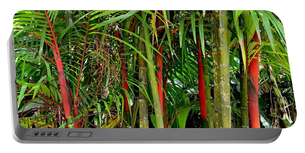 Bamboo Portable Battery Charger featuring the photograph Red Bamboo by Mary Deal