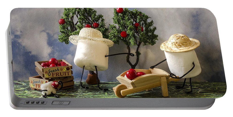 Apple Picking Portable Battery Charger featuring the photograph Red Delicious by Heather Applegate