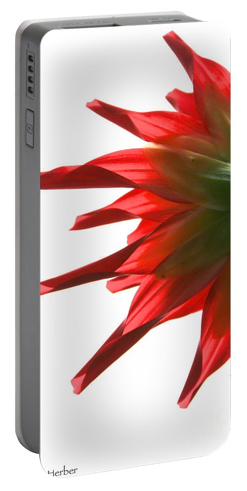 Flower Portable Battery Charger featuring the photograph Red Devil by Susan Herber