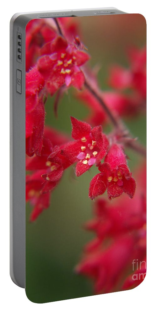 Wildflowers Portable Battery Charger featuring the photograph Red Fairy Trumpets by Jackie Farnsworth