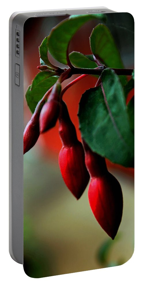 Red Portable Battery Charger featuring the photograph Red Flower Buds by Pamela Walton