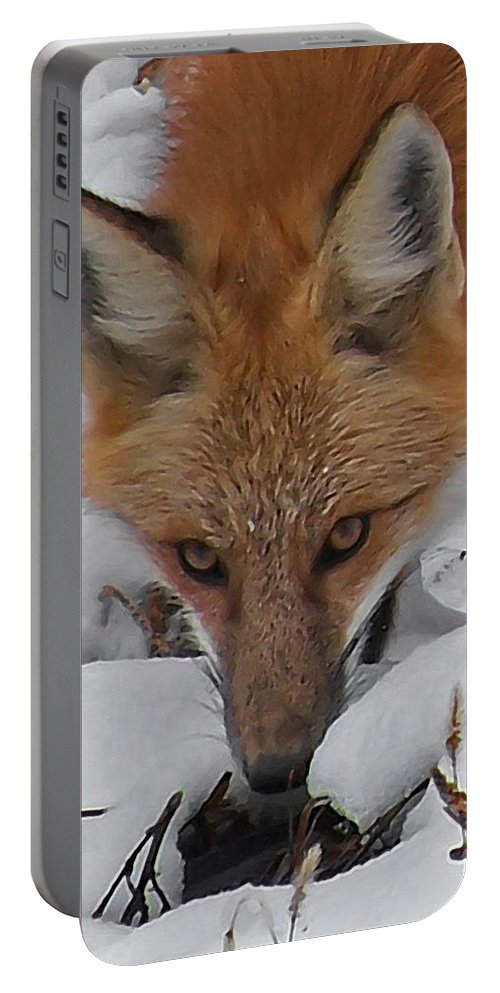 Animals Portable Battery Charger featuring the digital art Red Fox Upclose by Ernie Echols