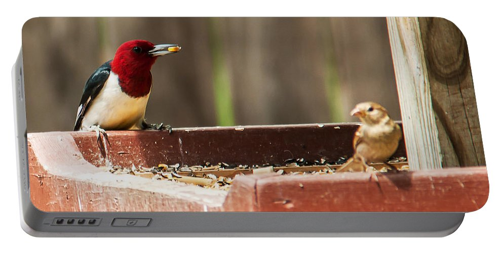 Heron Heaven Portable Battery Charger featuring the photograph Red-headed Woodpecker Feeding by Edward Peterson