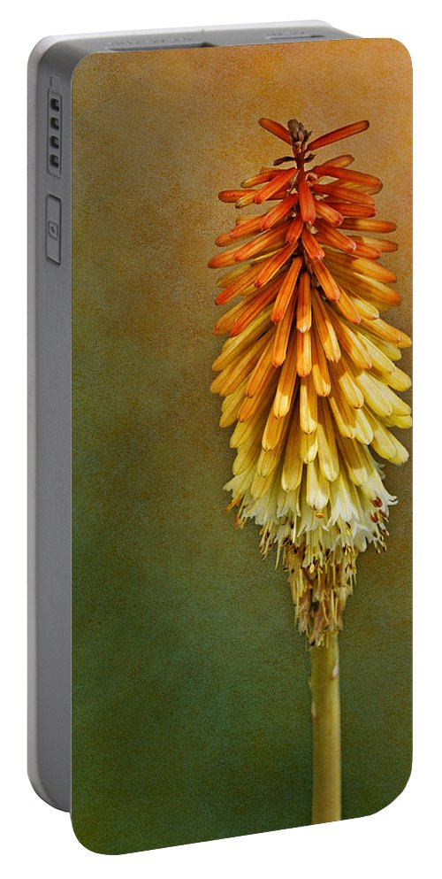 Red Hot Poker Portable Battery Charger featuring the photograph Red Hot Poker by Nikolyn McDonald