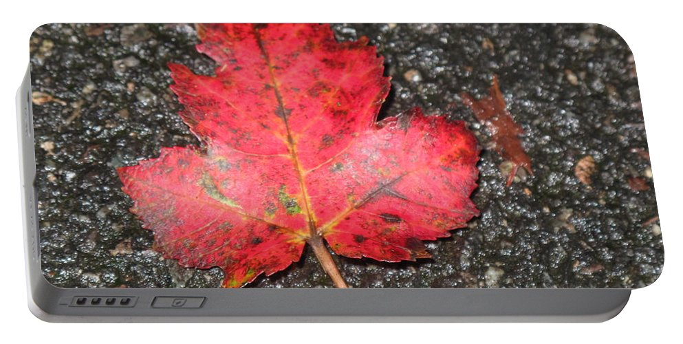 Leaves Portable Battery Charger featuring the photograph Red Leaf On Pavement by Barbara McDevitt