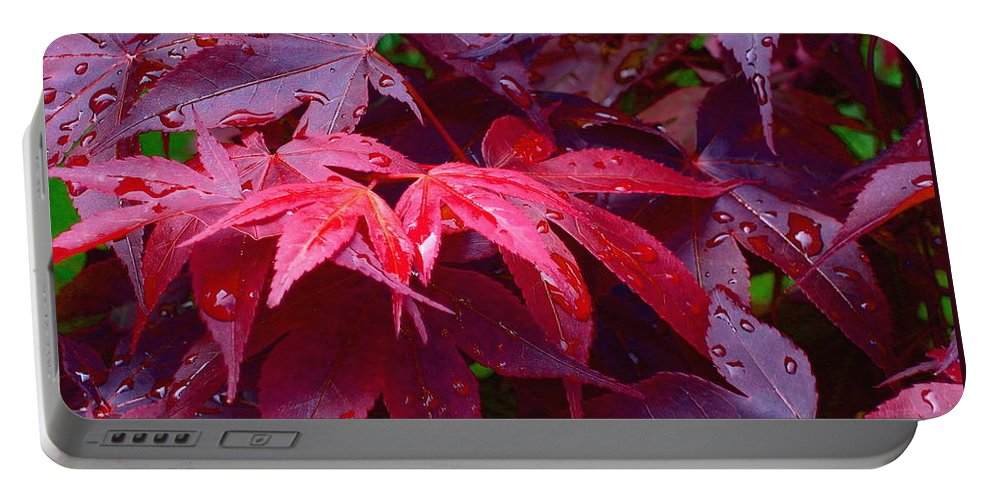Rain Portable Battery Charger featuring the photograph Red Maple After Rain by Ann Horn