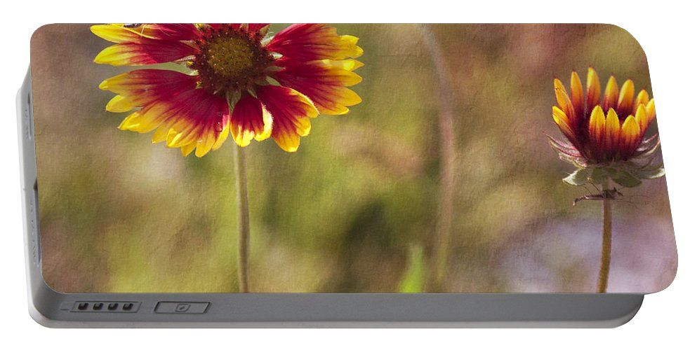 Flowers Portable Battery Charger featuring the photograph Red On Yellow by Pam Holdsworth