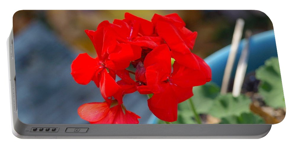 Flowers Portable Battery Charger featuring the photograph Red Petals by Darrell Clakley