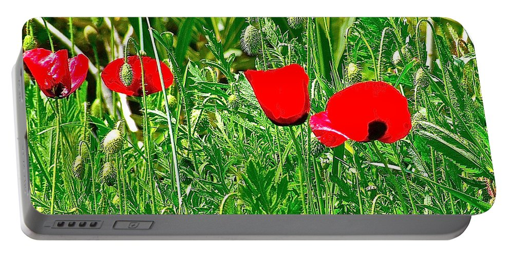 Meryem Ana Evi-cottage Portable Battery Charger featuring the photograph Red Poppies Near Meryem Ana Evi-cottage Believed To Be Mary's Last Home-turkey by Ruth Hager