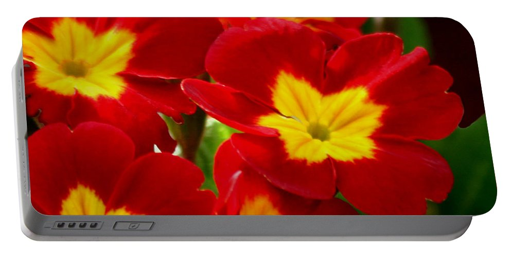 Flower Portable Battery Charger featuring the photograph Red Primroses by Art Block Collections